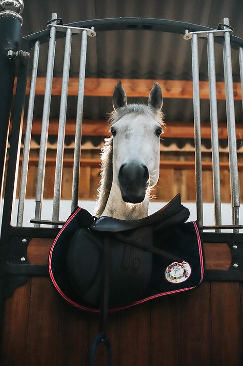 Tapis de selle Ride Bio Horse