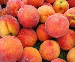 fruitpeachesripepeaches