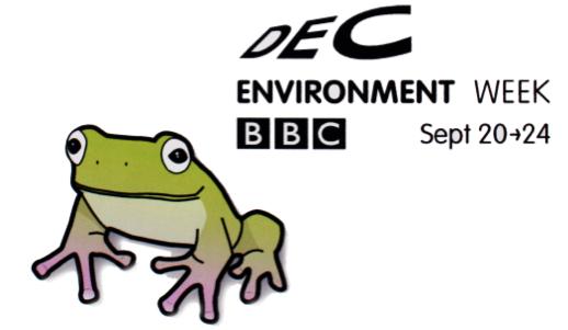 BBC DEC Environment