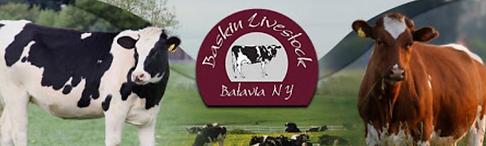 baskin livestock.PNG