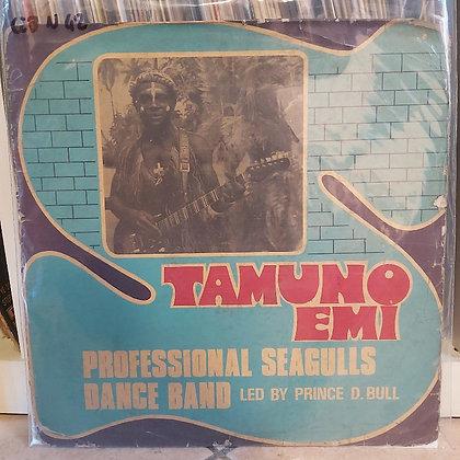 Professional Seagulls Dance Band Of Nigeria – Tamuno Emi [Philips]