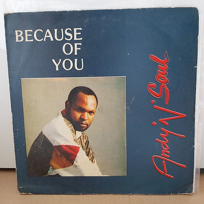 Andy 'N' Soul ‎– Because Of You [ANDY]