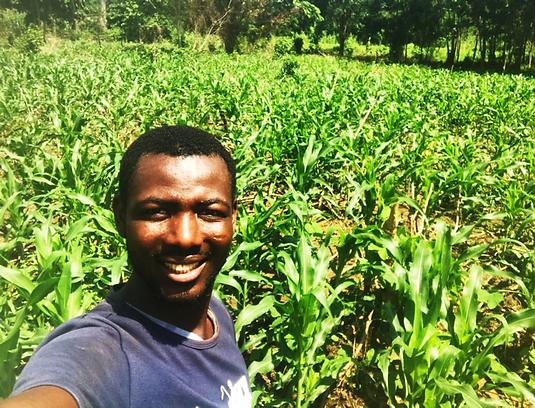 Lebutu Agriculture