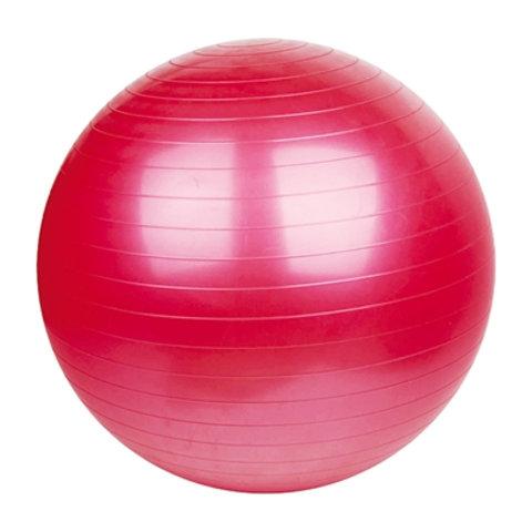 """כדורה 55 ס""""מתעמלות"""