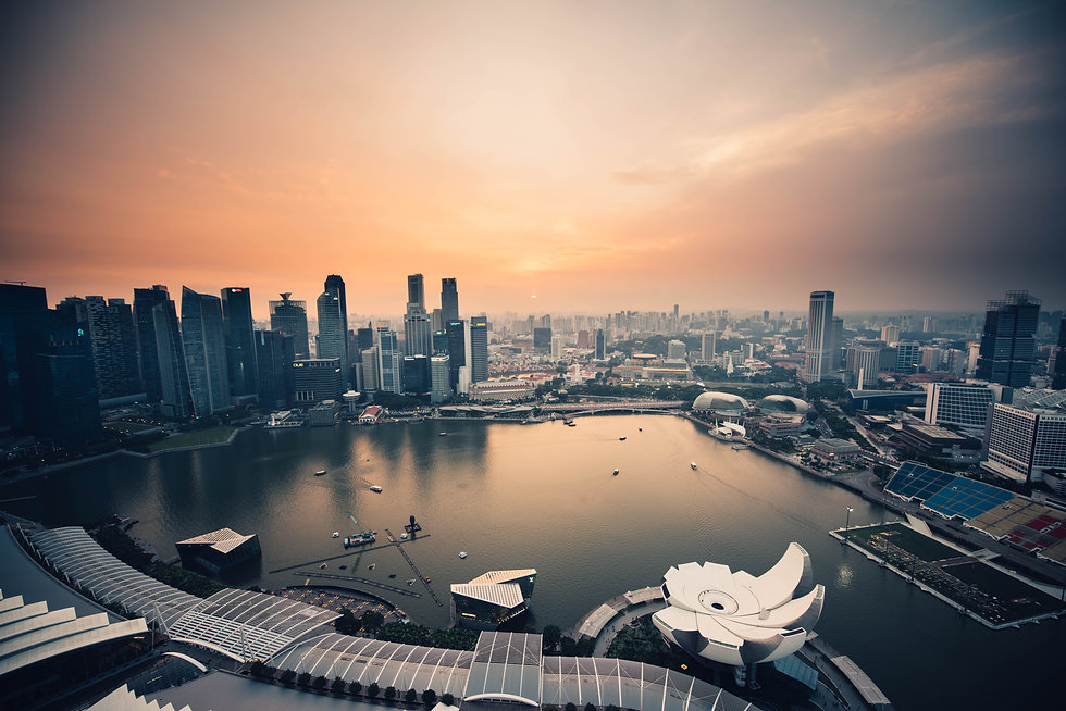 tpf-in-singapore.jpg