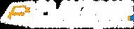 לוגו פלייזון לבן .png