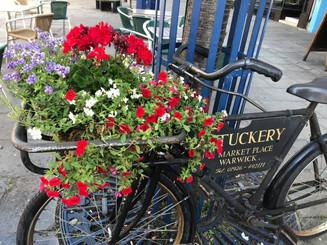 Warwick Bike and Flowers.jpg