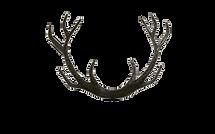 Wild Type design logo - antlers