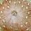 Thumbnail: Resin dandelion coasters, set of 2
