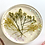 Thumbnail: Resin coasters with real flowers, set of 6