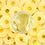 Thumbnail: Pineapple Rice Face Scrub