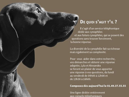 Info centrale canine !!