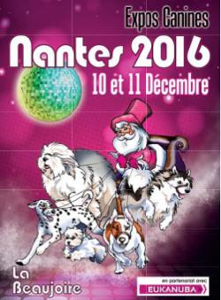 Expo de Nantes ! Spéciale CFATDT !