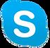 custom chatbot developers skype