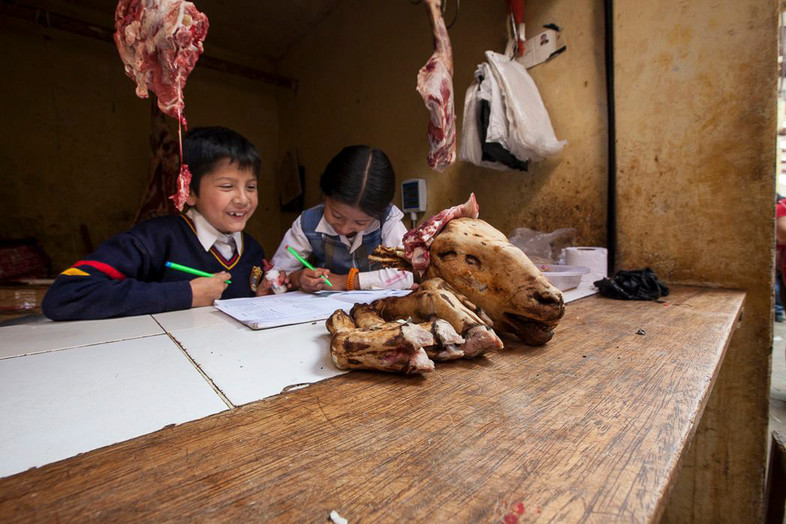 Two local kids do homework behind their mothers work desk, selling lamb at the local market. Chachapoyas, Peru.