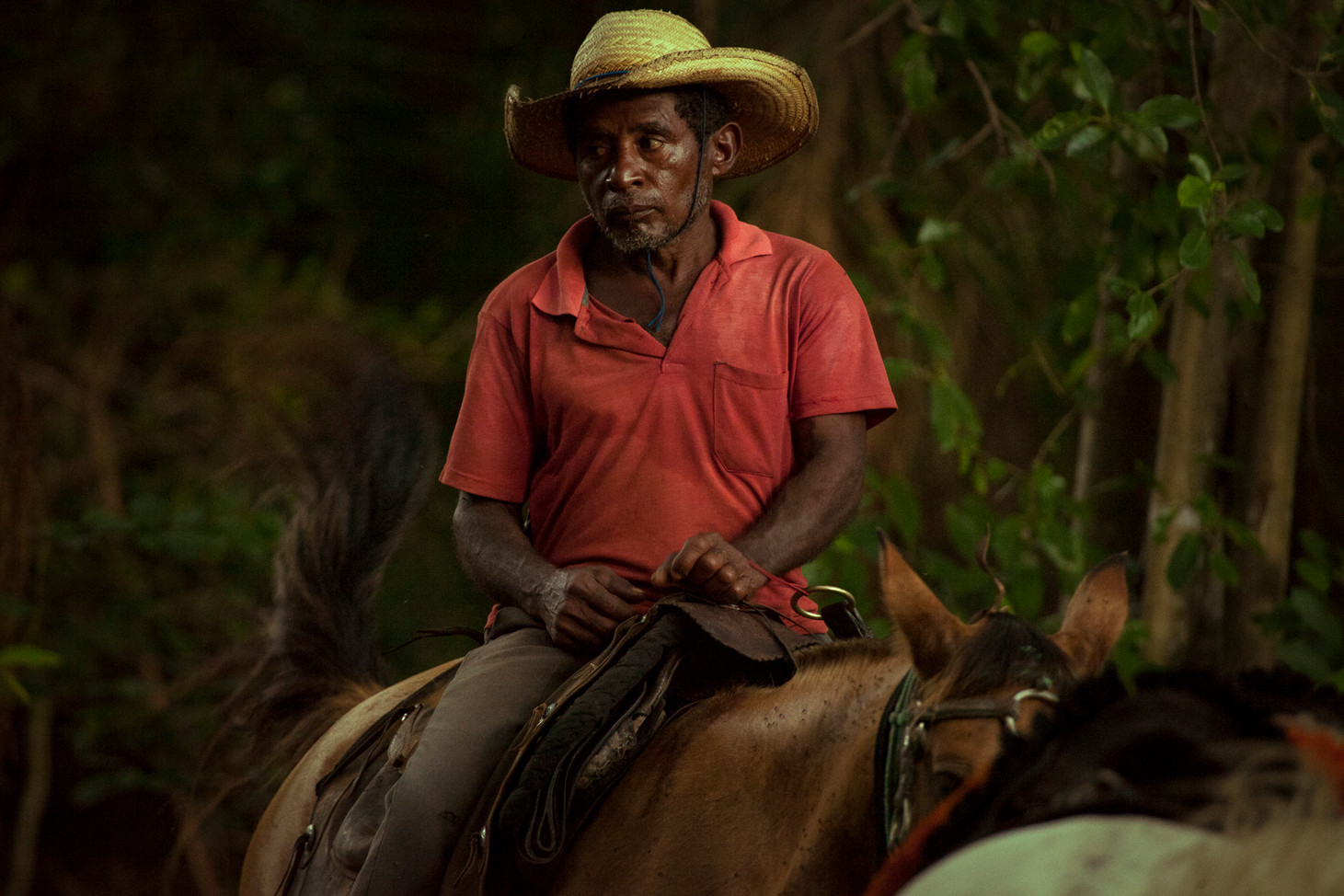 Chilo has been working as a Vaquero (Cowboy) all his life. He spends most of his days in isolation, patroling isolated parts of the Pantanal for poaching and illegal cattle raising.  He visits the local village Poconé once every 3-4 months.