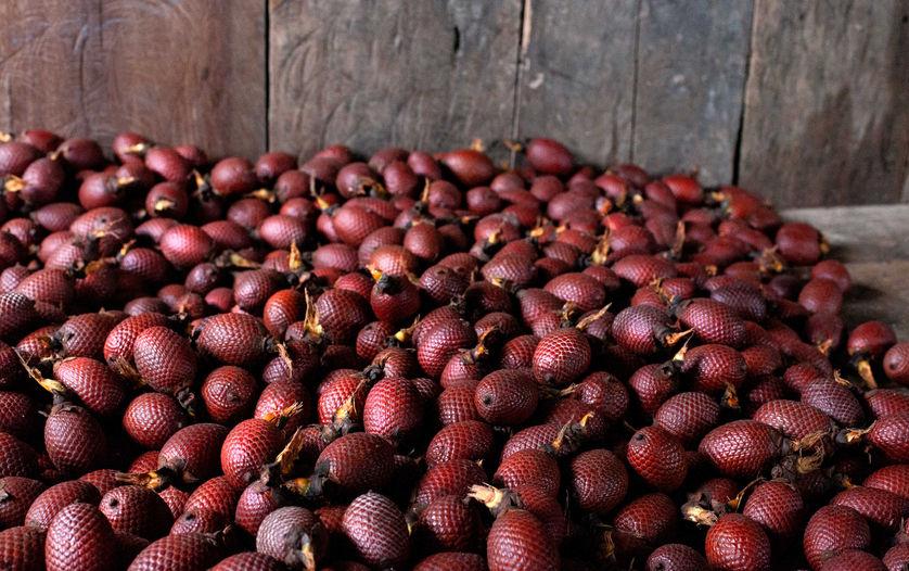 Aguaje Harvest