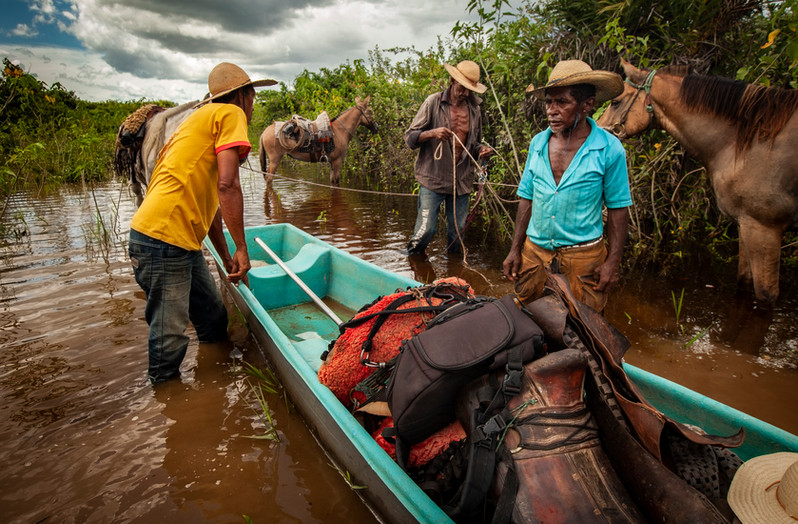 Local cowboys load cargo from horseback and place it into rivers to cross the Paraguay river. During the wet season, treks are impossible to make in much of the wetlands, therefore horses and canoes are used.