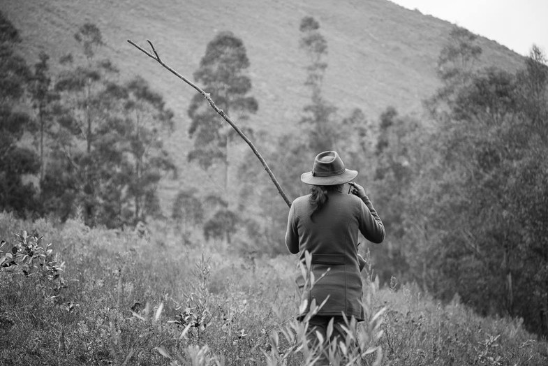 Peters wife, searches for wild bulls nearing the territory. The bulls often destroy their gardens and are a threat to the children.