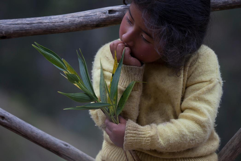 The rose color on Many andean peoples cheeks comes from the combination of sun and harsh winds.