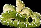 Emerald Tree Boa Snake Exotic