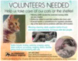 VolunteersNeed2.jpg