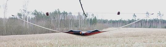 bowspegasusmonika2.jpg
