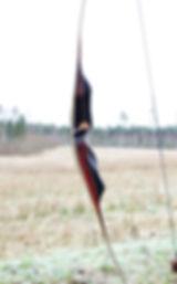 bowspegasusmonika1.jpg
