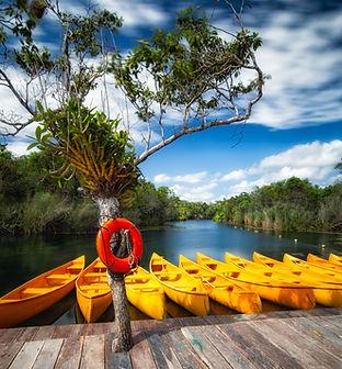Tulum Jungle Adventure.jpg