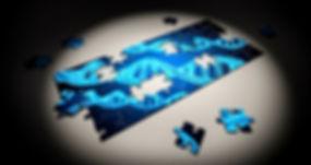 puzzle-2500333.jpg