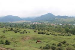 The village pasture commons. Izlaz
