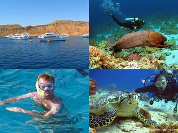 Podwodny raj. Ras Mohammed