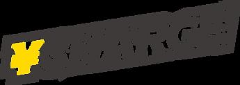 logo_ffe20.png
