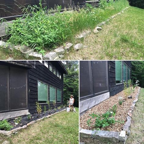 No more quack grass!