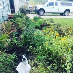 Garden helper