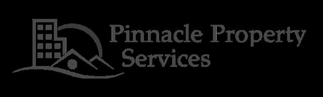logo-pinnacle-light-v2_edited_edited.png