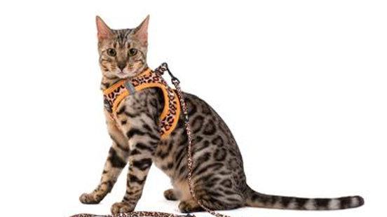Pre-Order Cheetah Cat Leash