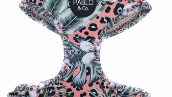 Palm Beach: Adjustable Harness