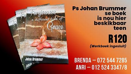 Boek - Johan Brummer.jpg
