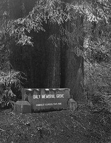 daly-memorial-park-552_edited.jpg