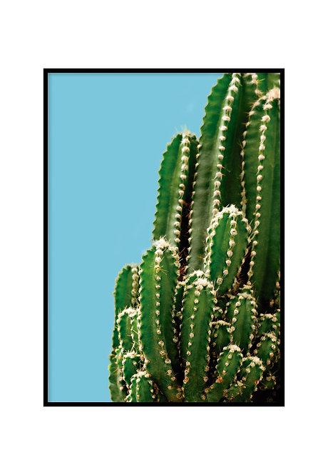 GREEN CACTUS, PRINTABLE