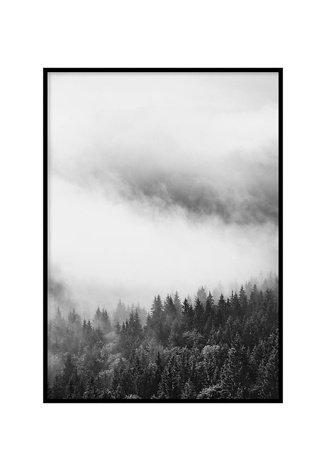 FOREST BW, PRINTABLE