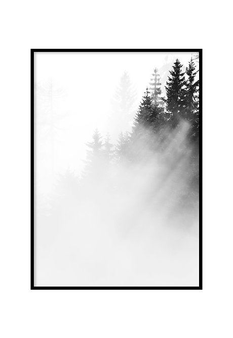 FOREST, PRINTABLE