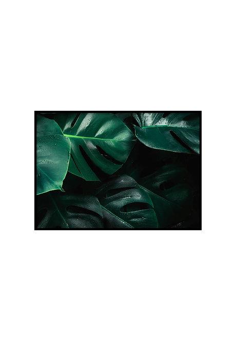 GREEN LEAVES, PRINTABLE