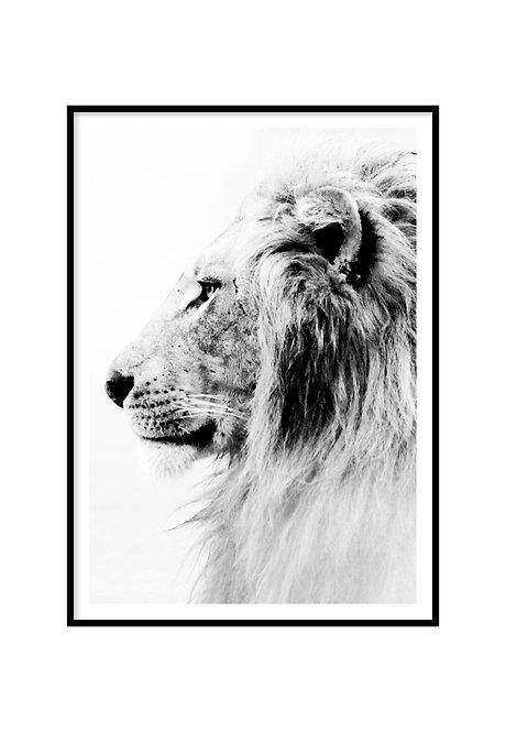 LION PRINTABLE, PRINTABLE