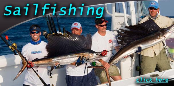 sailfishing_607