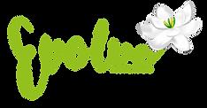 evolve-logo-colour.png