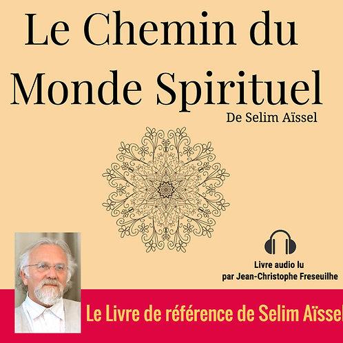 MP3 Le chemin du monde spirituel