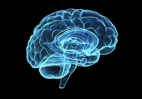 0728_deep-brain-stimulation_650x455.jpg