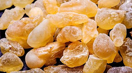 boswellia-frankincense.jpg